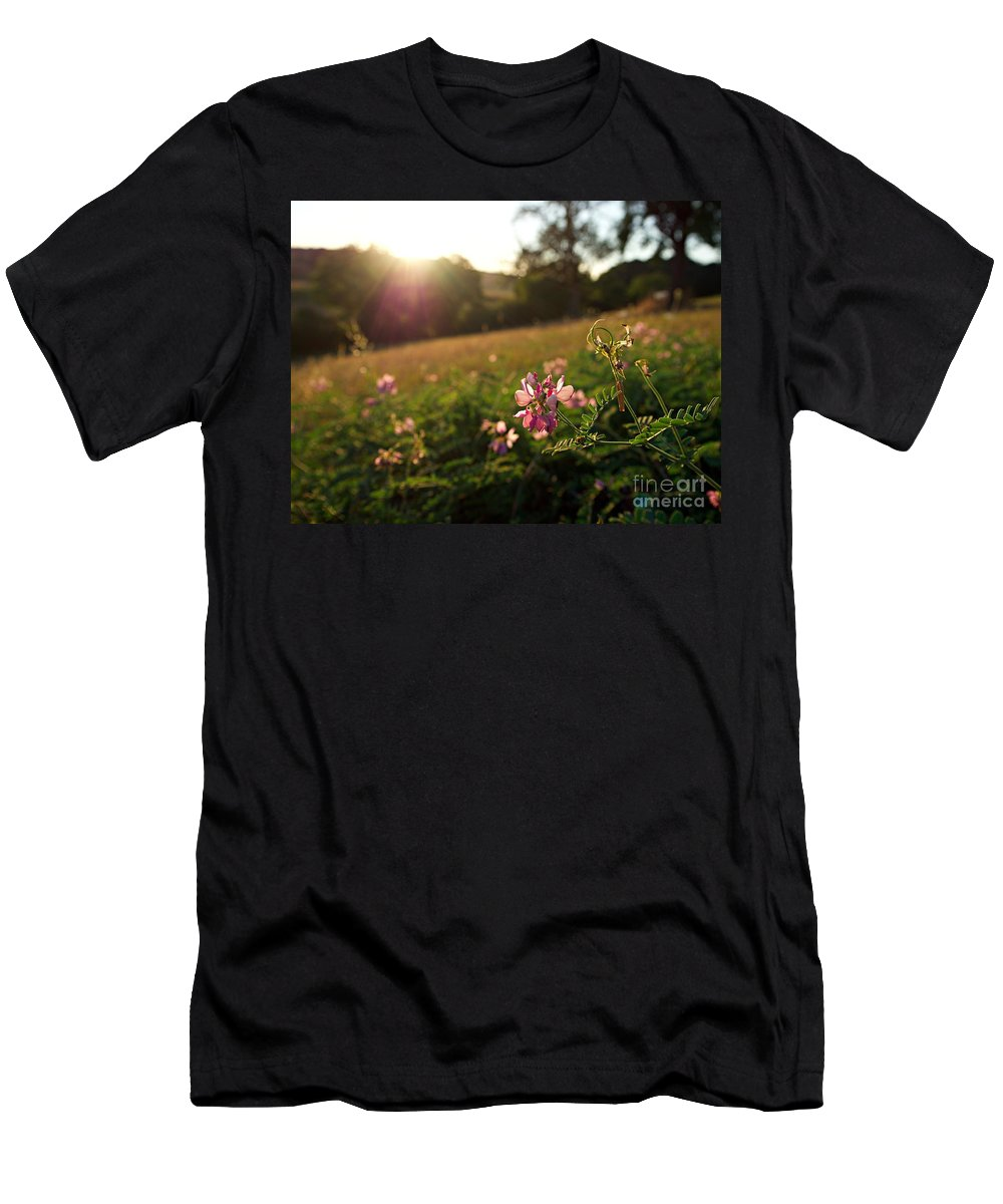 Germany Men's T-Shirt (Athletic Fit) featuring the photograph Meadow Sunset by Christoph Beyhl
