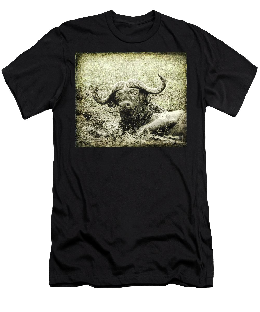 African Buffalo Men's T-Shirt (Athletic Fit) featuring the digital art Mean Buffalo by Liz Leyden