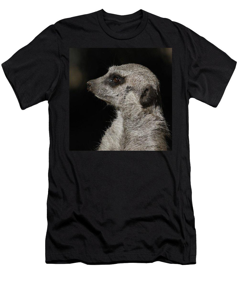 Meerkat Men's T-Shirt (Athletic Fit) featuring the photograph Meerkat Profile by Ernie Echols
