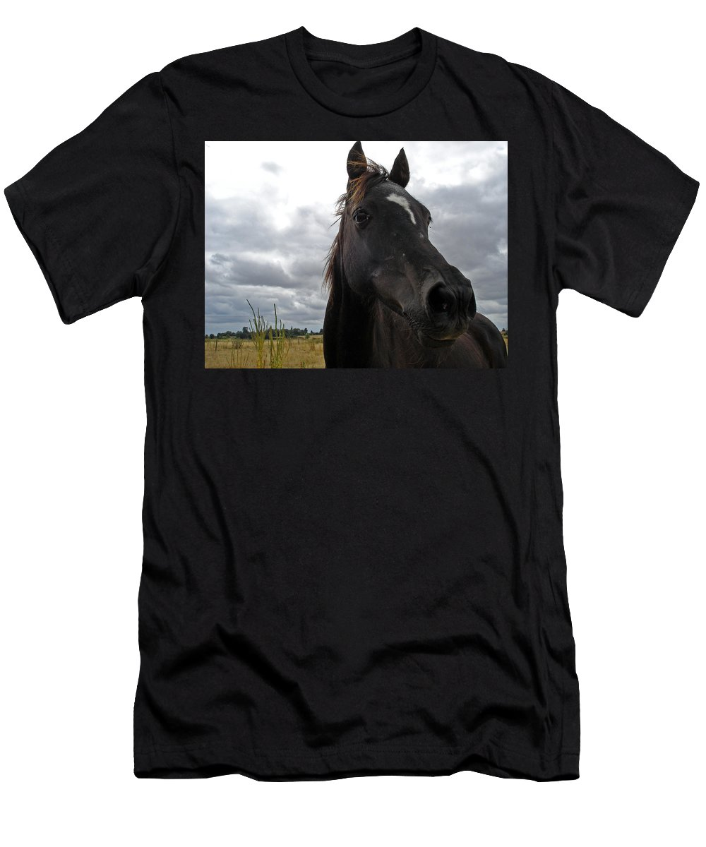 Black Beauty Men's T-Shirt (Athletic Fit) featuring the photograph Midnight Melody by Susan Baker