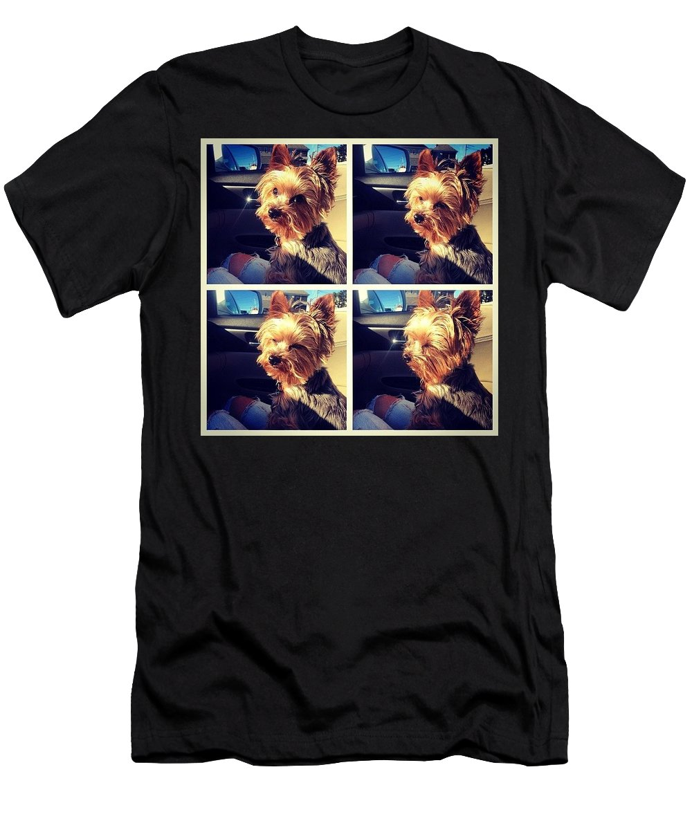Sunshine T-Shirt featuring the photograph Sometimes Its Too Bright by Kate Arsenault