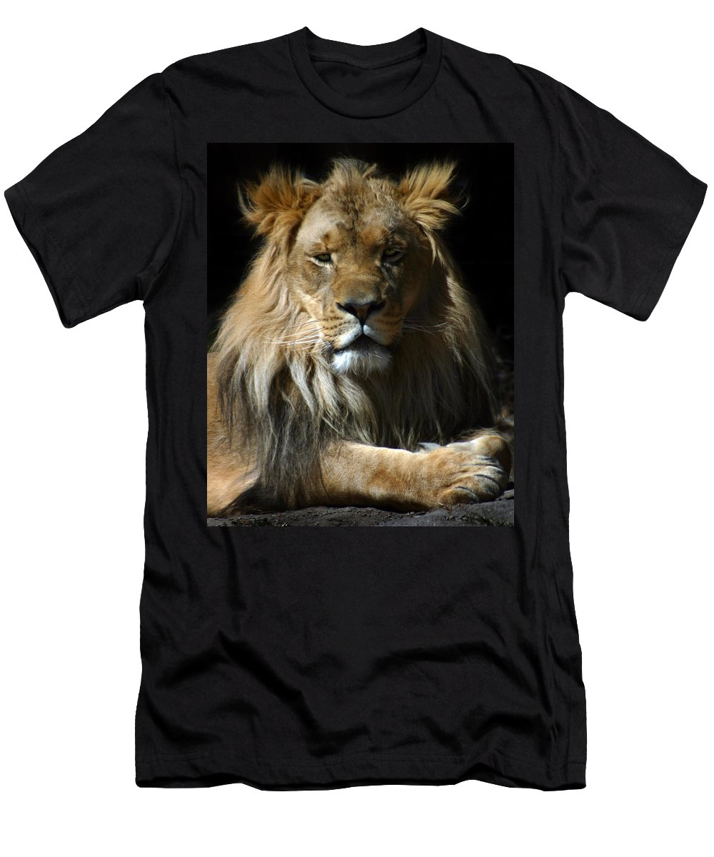 Lion Men's T-Shirt (Athletic Fit) featuring the photograph Mohawk by Anthony Jones