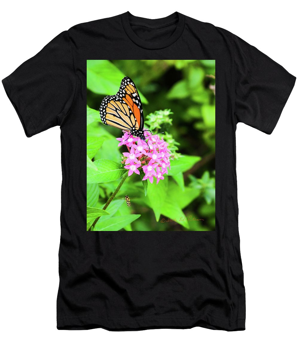 Heron Heaven Men's T-Shirt (Athletic Fit) featuring the photograph Monarch Butterfly And Honey Bee by Edward Peterson