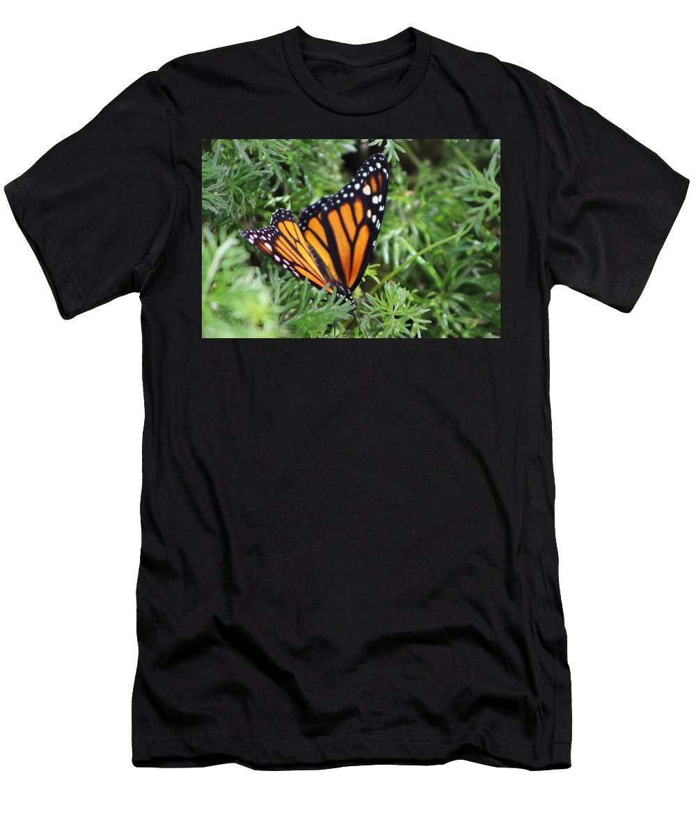 Monarch Butterfly Men's T-Shirt (Athletic Fit) featuring the photograph Monarch Butterfly In Lush Leaves by Colleen Cornelius