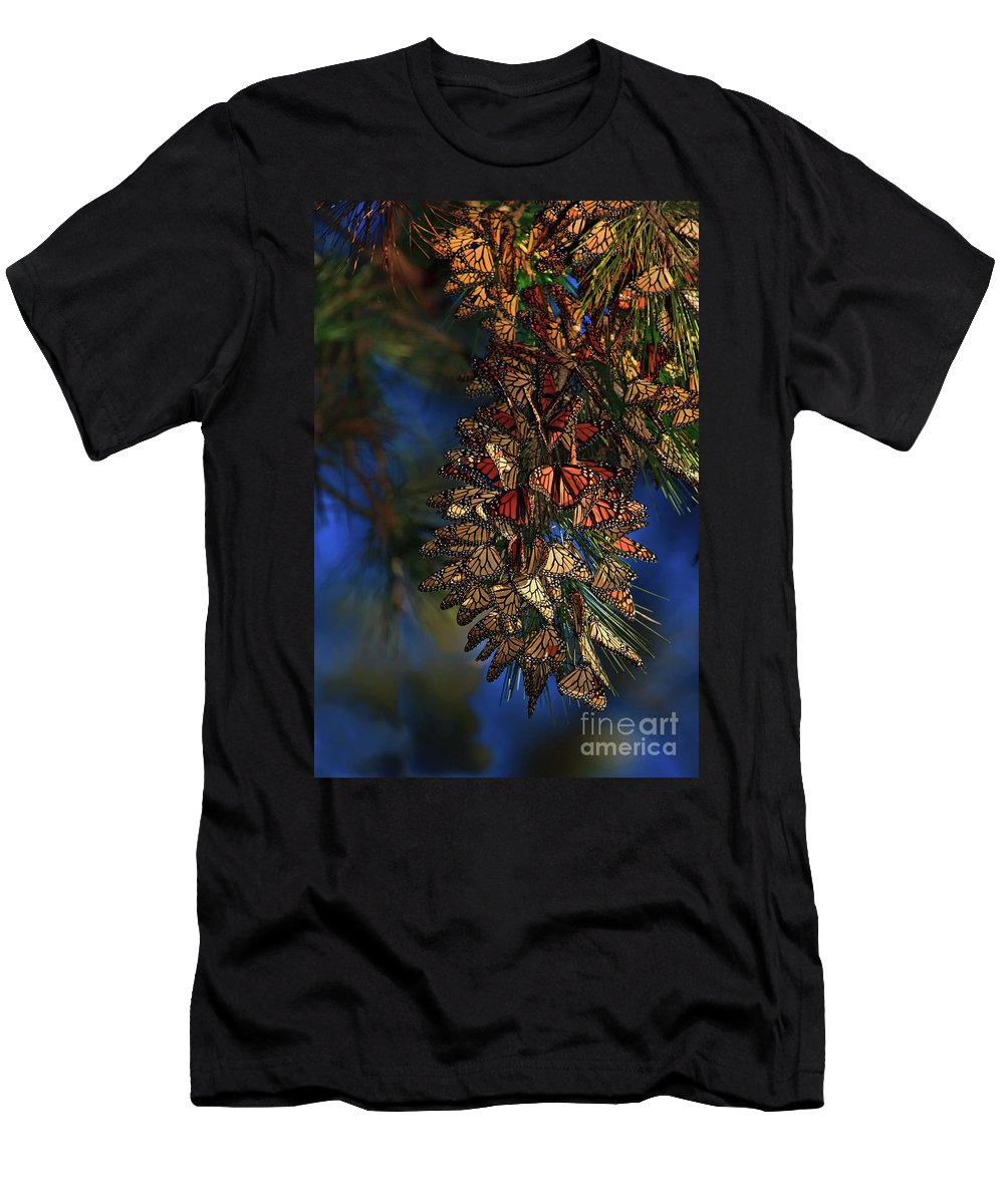 Monarch Cluster Men's T-Shirt (Athletic Fit) featuring the photograph Monarch Cluster by Beth Sargent