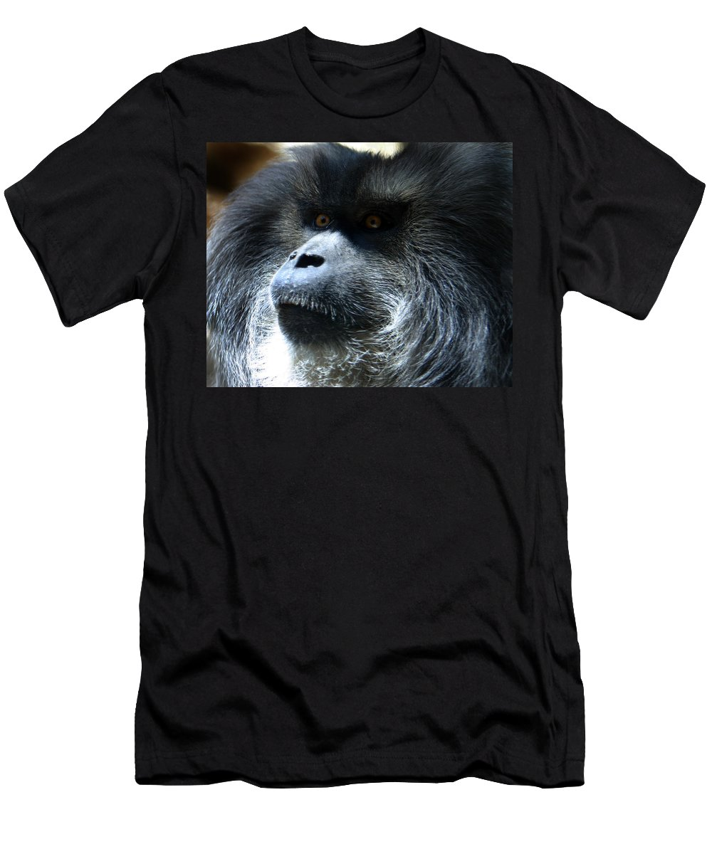 Monkey Men's T-Shirt (Athletic Fit) featuring the photograph Monkey Stare by Anthony Jones
