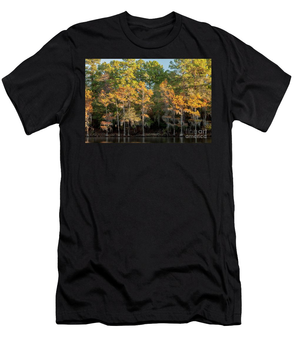 Cypress Men's T-Shirt (Athletic Fit) featuring the photograph Morning Reflection by Iris Greenwell