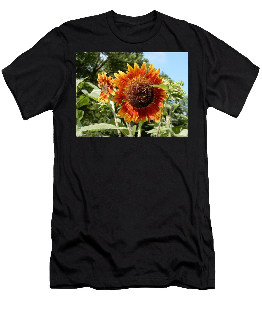 Mums Men's T-Shirt (Athletic Fit) featuring the photograph Mother And Daughter Sunflowers by Tina M Wenger