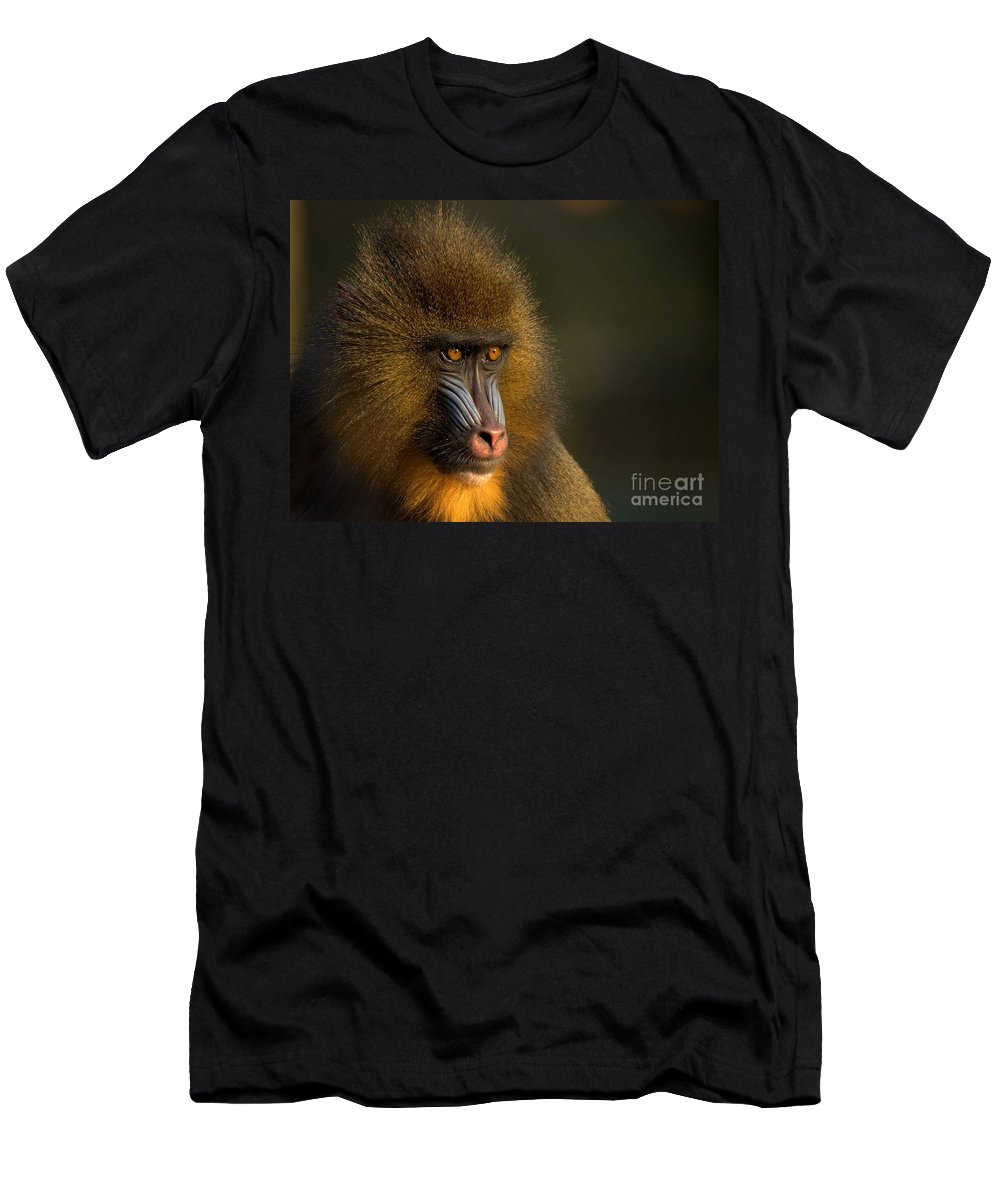 Wildlife Men's T-Shirt (Athletic Fit) featuring the photograph Mother's Finest by Jacky Gerritsen