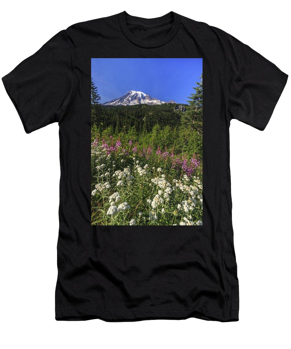 3scape Men's T-Shirt (Athletic Fit) featuring the photograph Mount Rainier by Adam Romanowicz