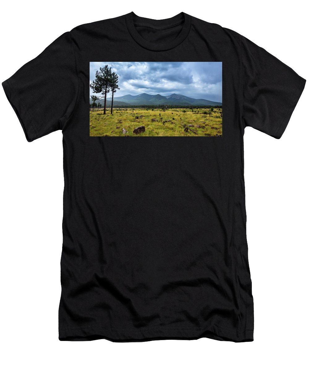 Arizona Men's T-Shirt (Athletic Fit) featuring the photograph Mountain View After Rain by CEB Imagery