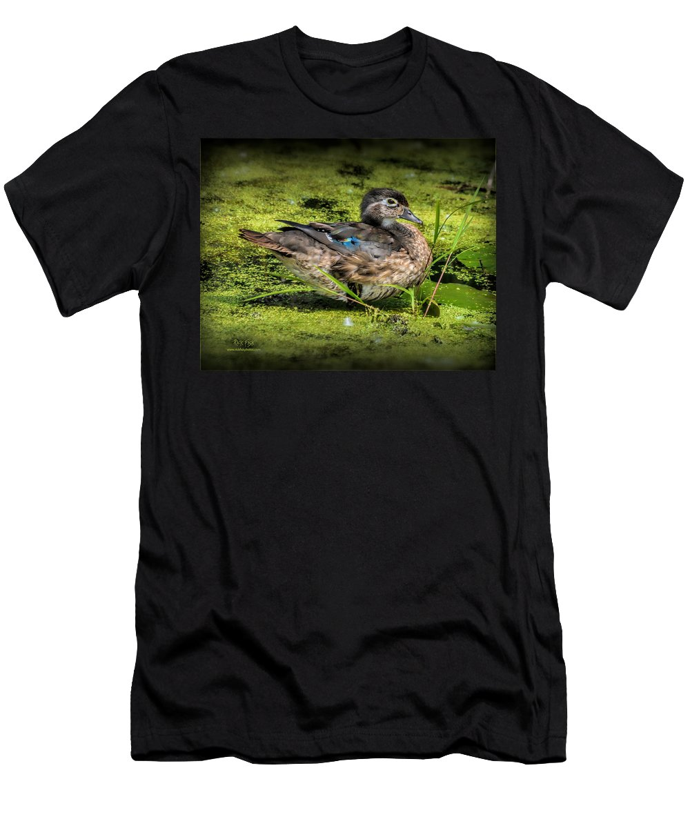 Hen Wood Duck Men's T-Shirt (Athletic Fit) featuring the photograph Ms. Wood Duck by Rick Fisk