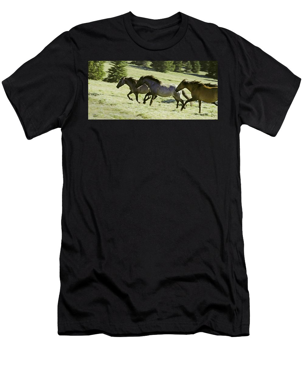 Bard Horses Men's T-Shirt (Athletic Fit) featuring the photograph Mustang Mares by Richard Rivard