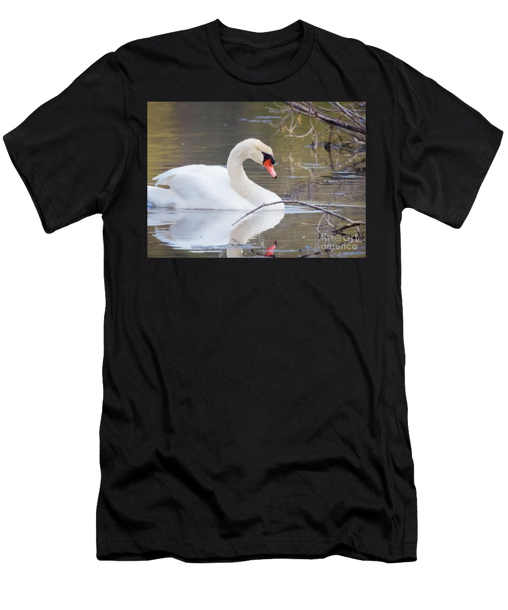 Mute Swans Men's T-Shirt (Athletic Fit) featuring the photograph Mute Swan I by Karen Jorstad