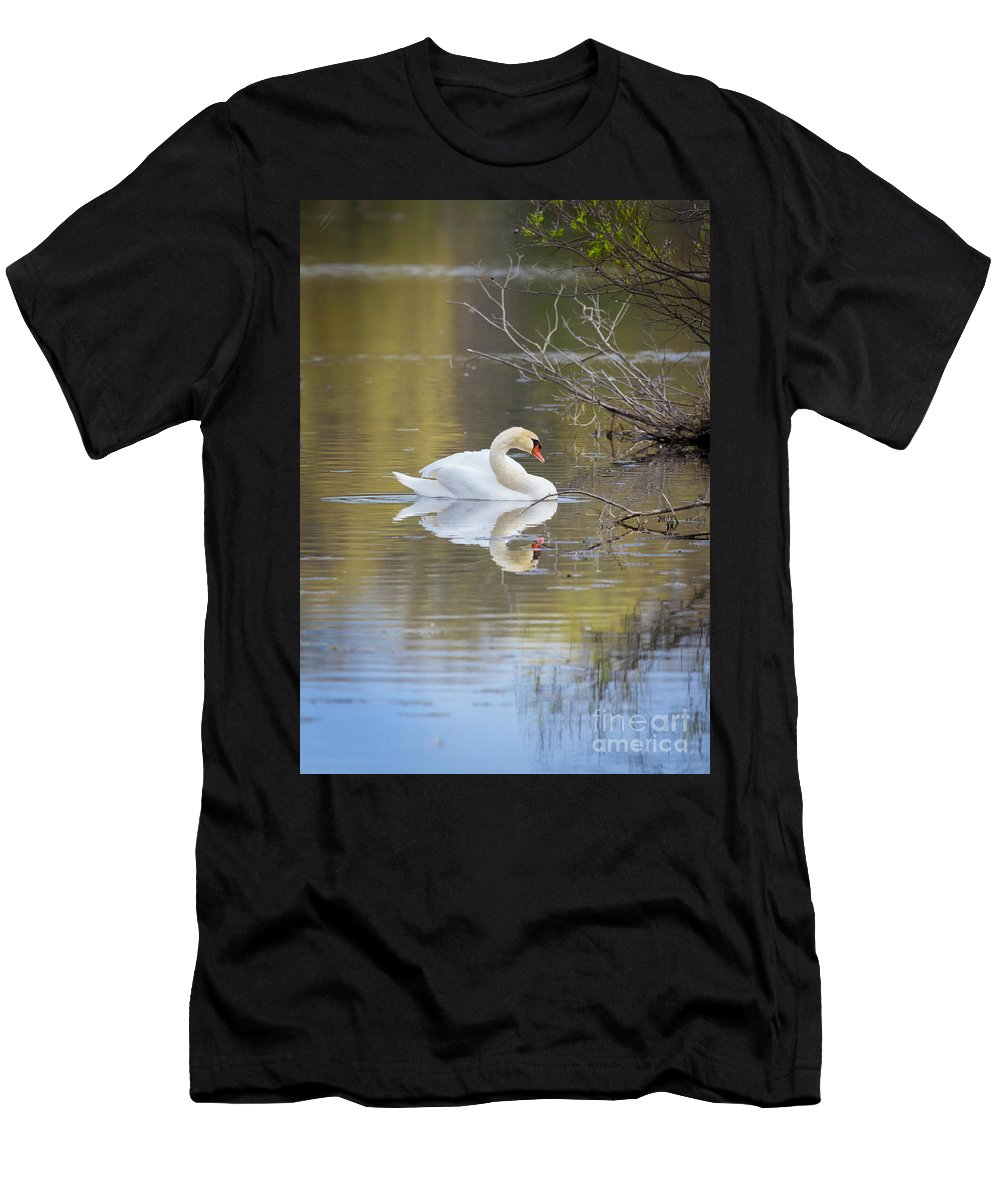 Mute Swan Men's T-Shirt (Athletic Fit) featuring the photograph Mute Swan Reflection by Karen Jorstad