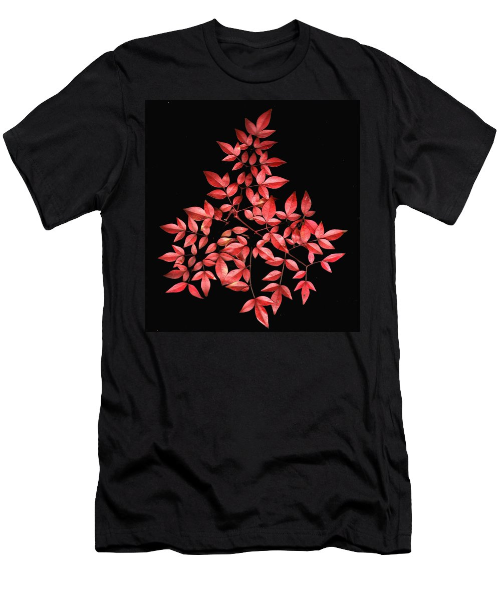 Leaves Men's T-Shirt (Athletic Fit) featuring the photograph Nadina Branch by Wayne Potrafka