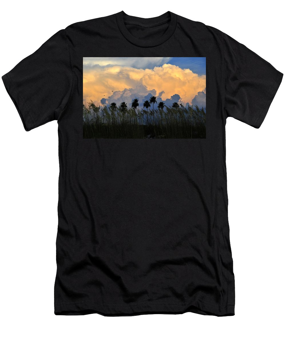 Fine Art Photography Men's T-Shirt (Athletic Fit) featuring the photograph Native Florida by David Lee Thompson