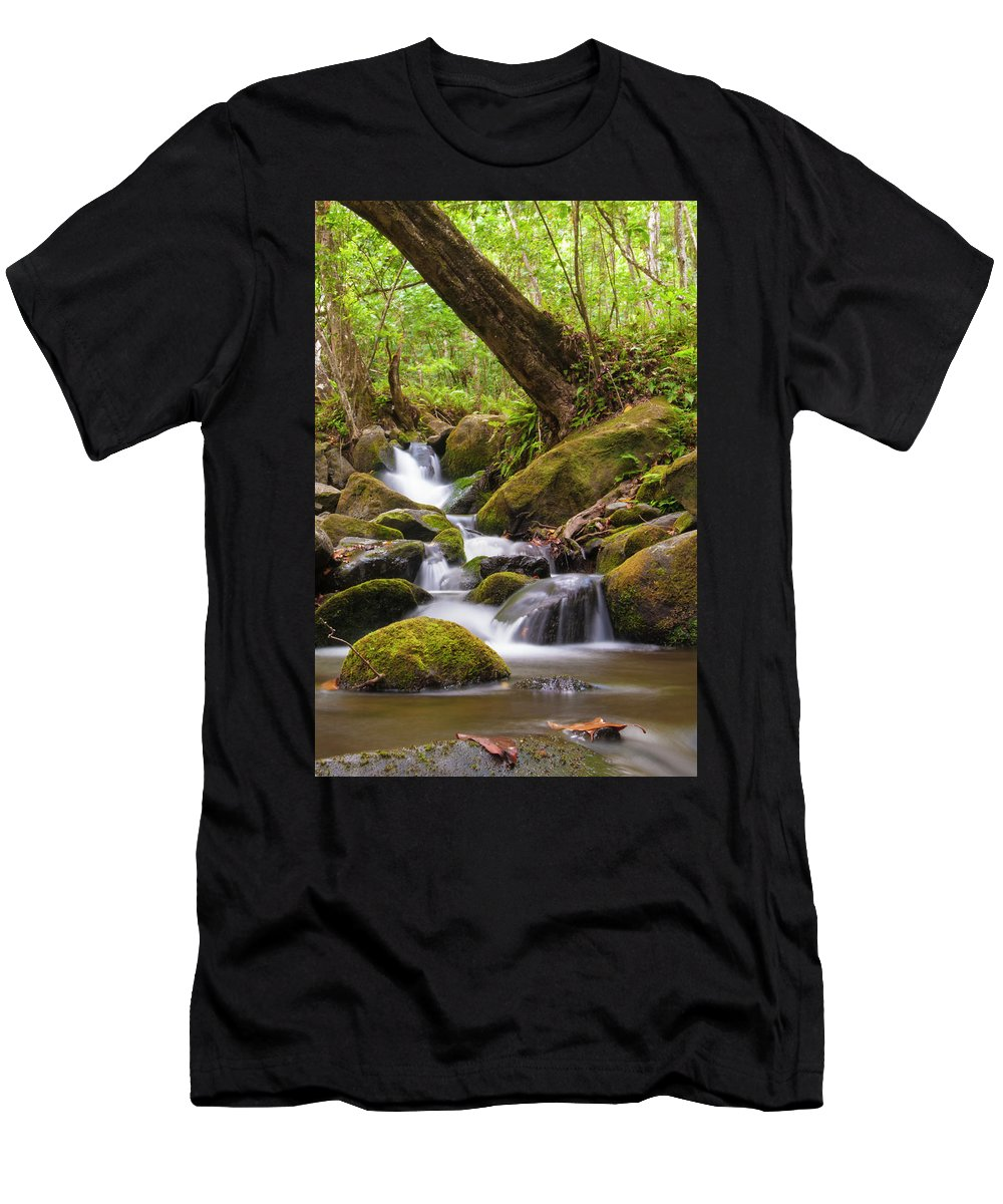 Waterfall Men's T-Shirt (Athletic Fit) featuring the photograph Natural Flow by John Coffey