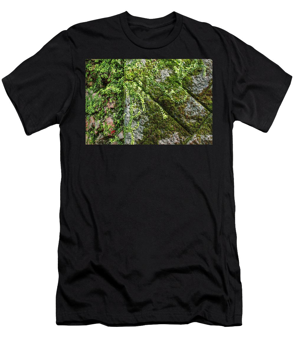 Architecture Men's T-Shirt (Athletic Fit) featuring the photograph Nature - Living Retention Wall 1 by Arthur Babiarz
