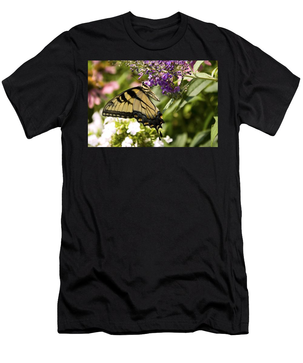 Butterfly Men's T-Shirt (Athletic Fit) featuring the photograph Nature's Canvas by Scott Wyatt