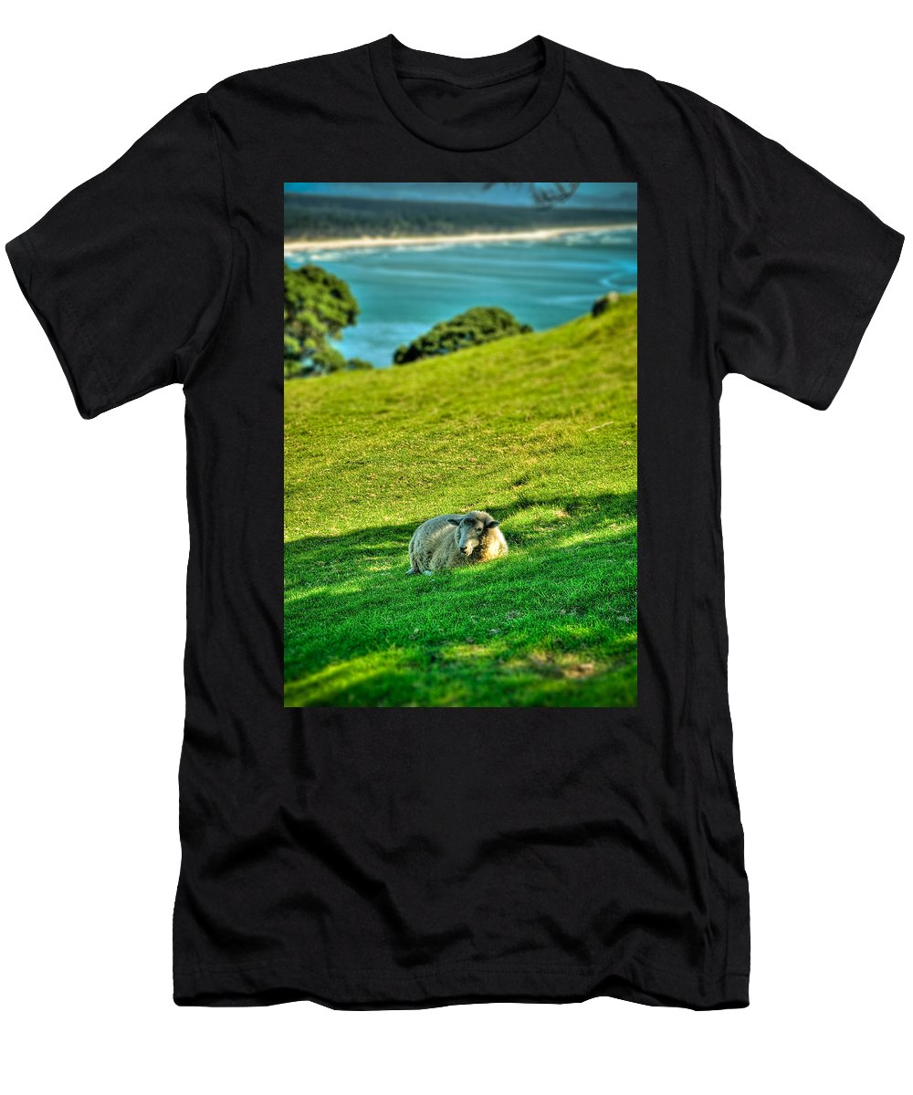 Sheep Men's T-Shirt (Athletic Fit) featuring the photograph Need A Break... by Les Lorek