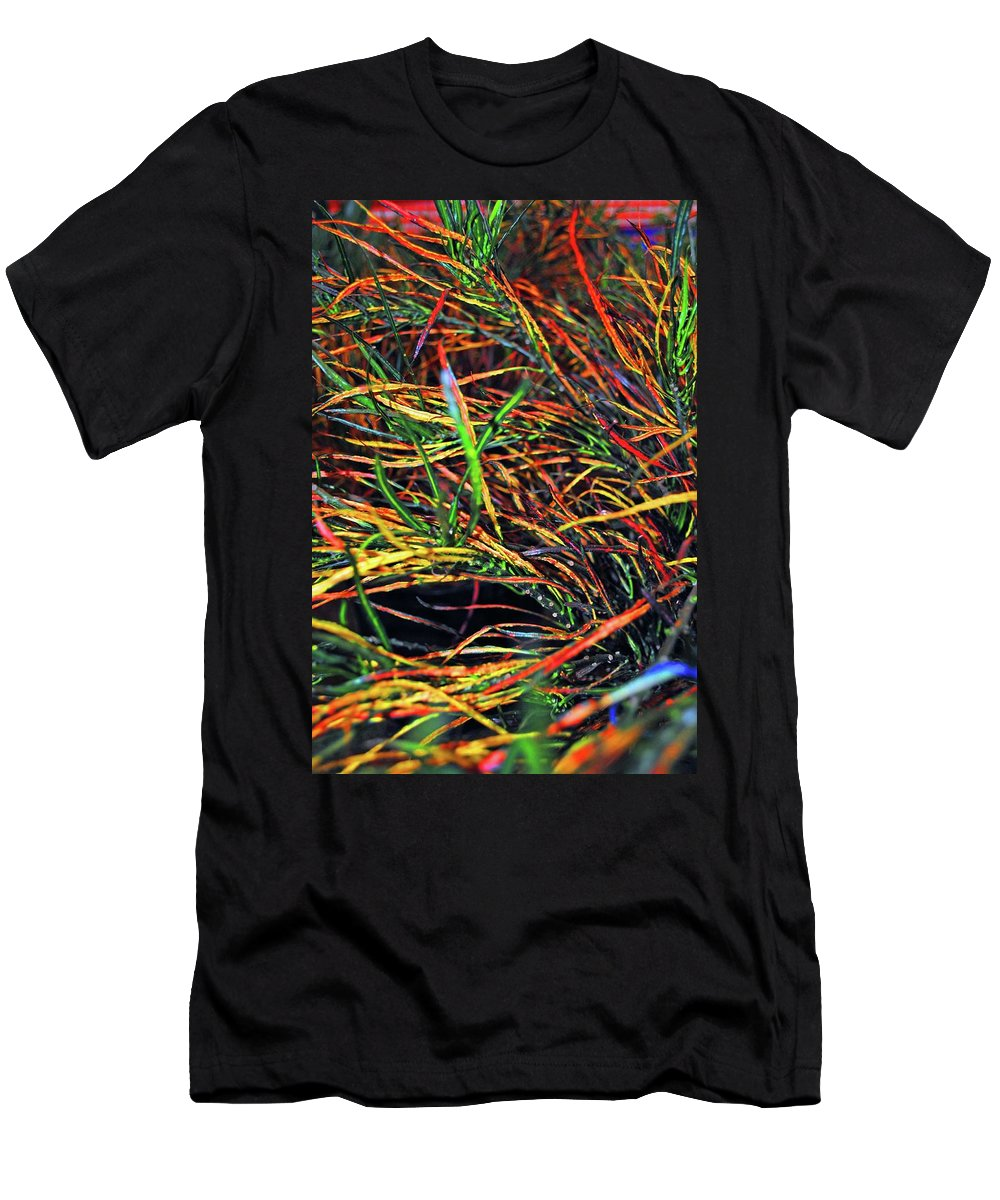 Color Men's T-Shirt (Athletic Fit) featuring the photograph Needles Of Color by Jost Houk