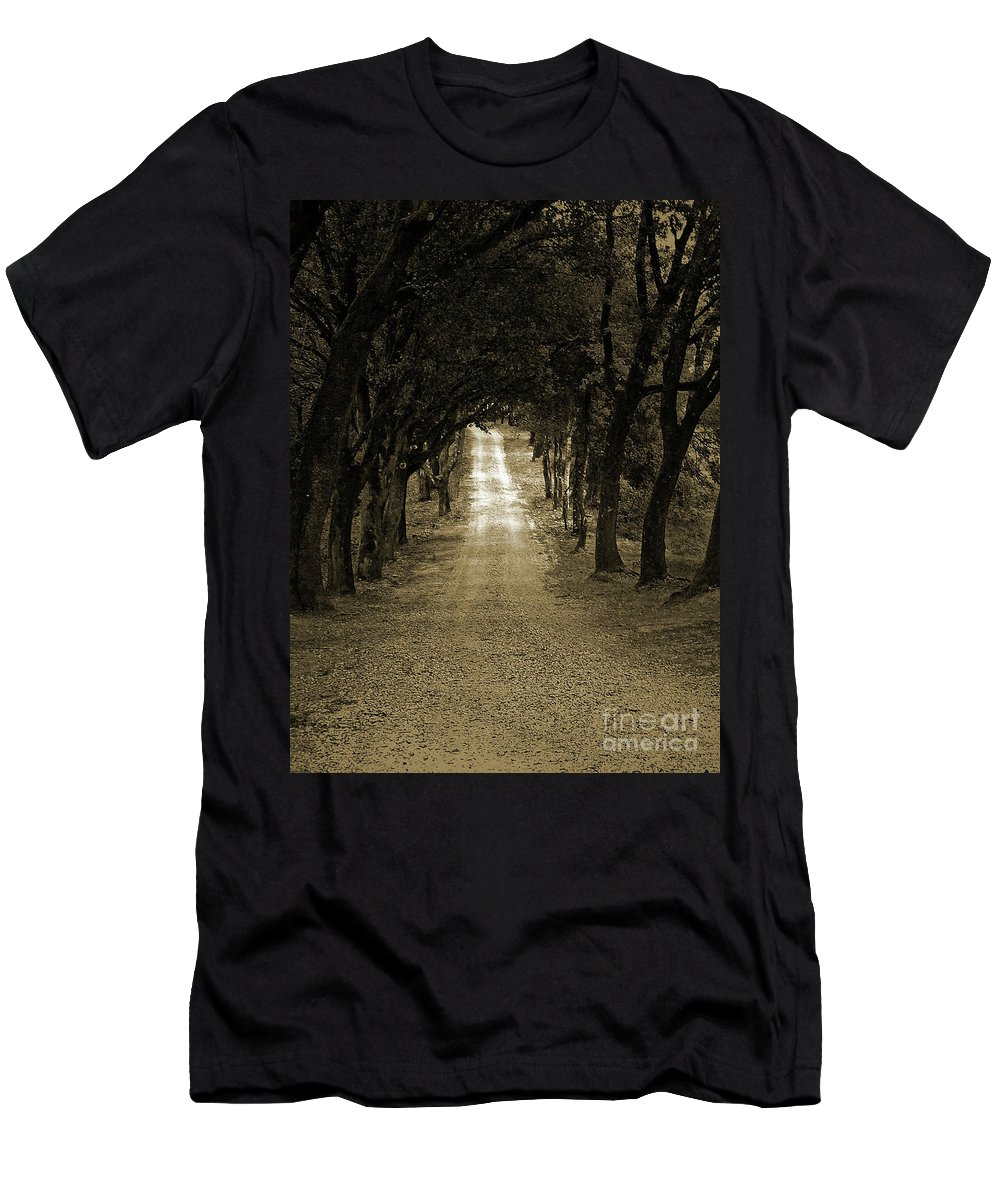 Autumn Men's T-Shirt (Athletic Fit) featuring the photograph Never Ending by Angela Wright