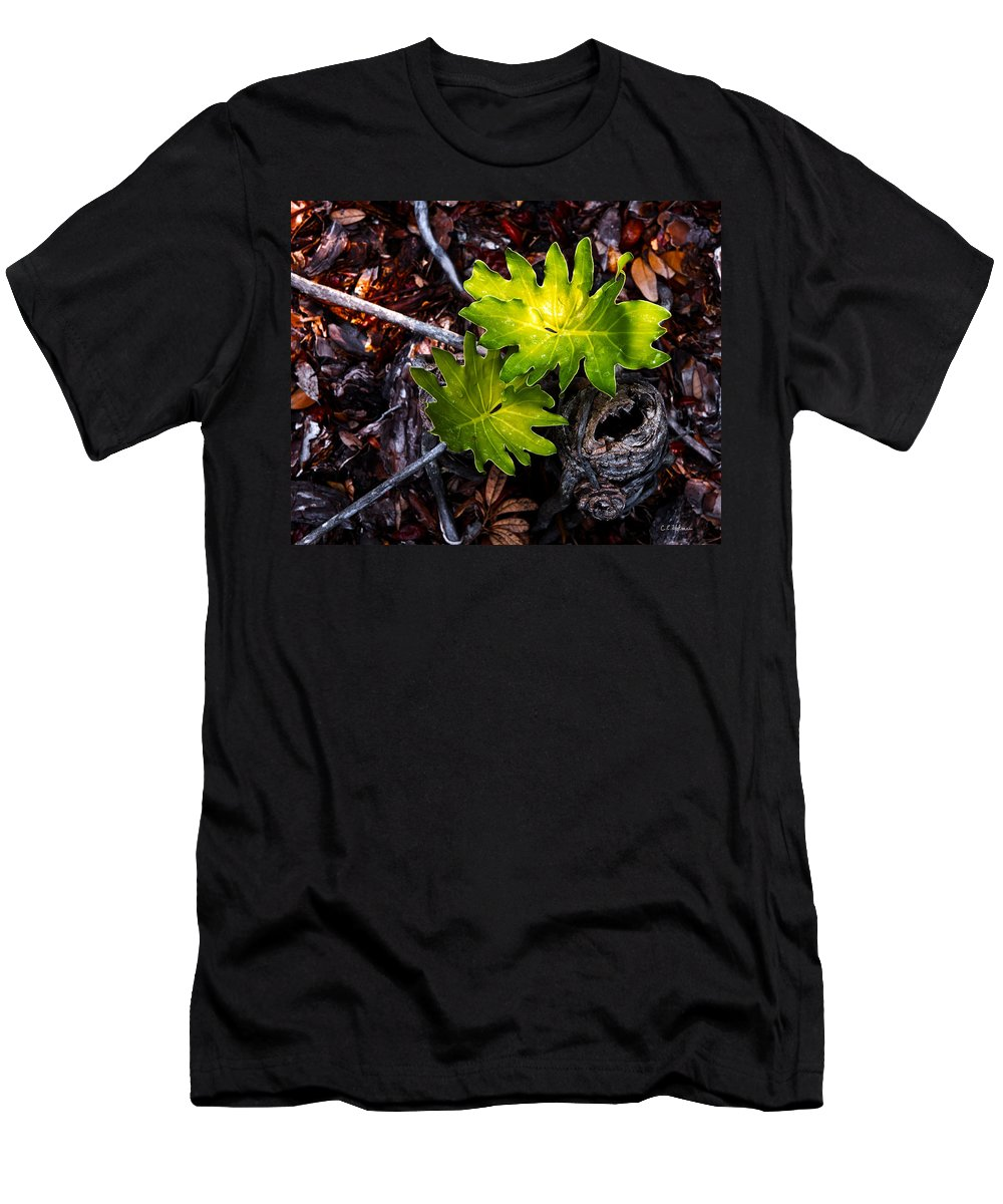 Plant Men's T-Shirt (Athletic Fit) featuring the photograph New Growth by Christopher Holmes