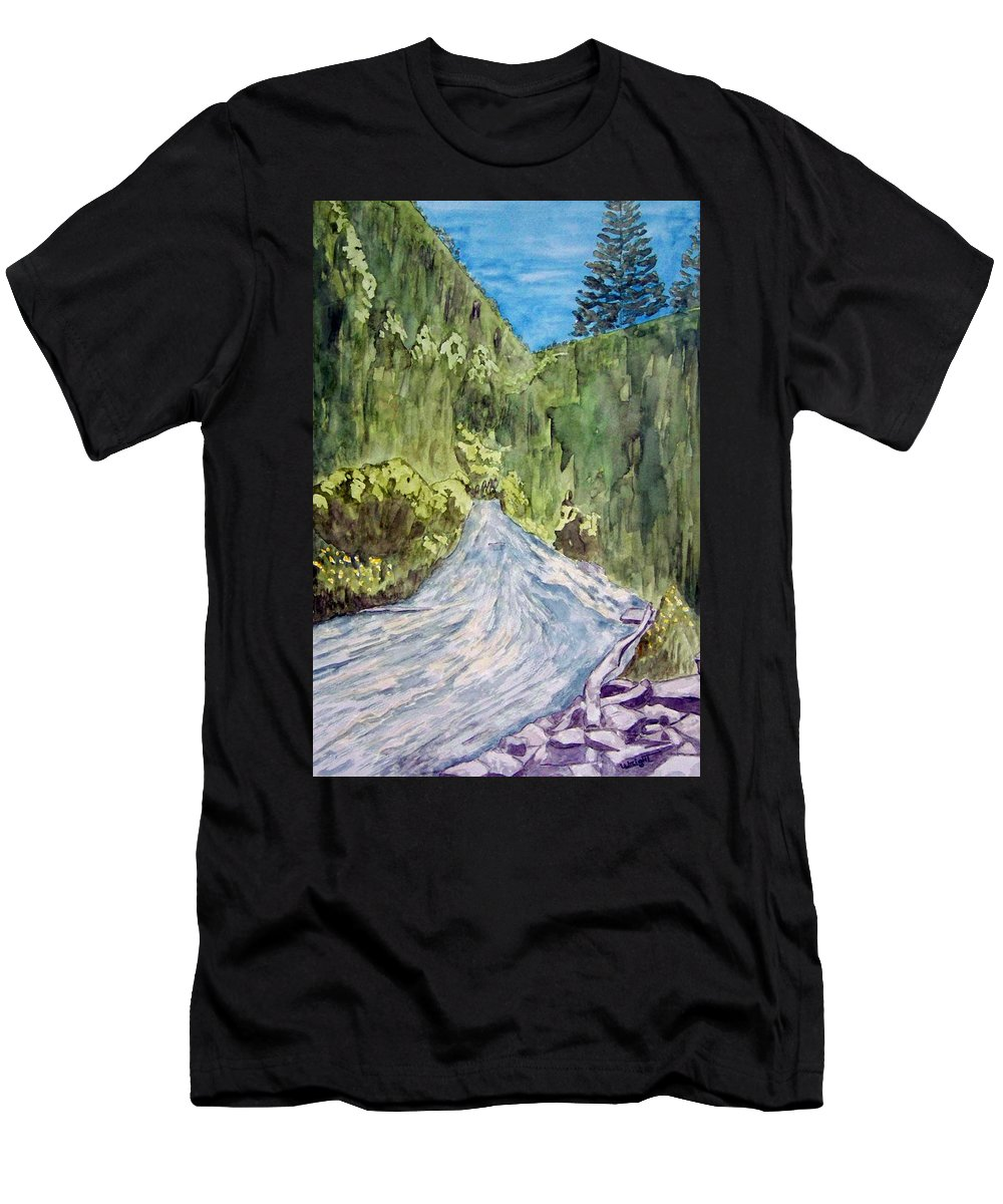 New Mexico Art Men's T-Shirt (Athletic Fit) featuring the painting New Mexico Canyon Impression by Larry Wright
