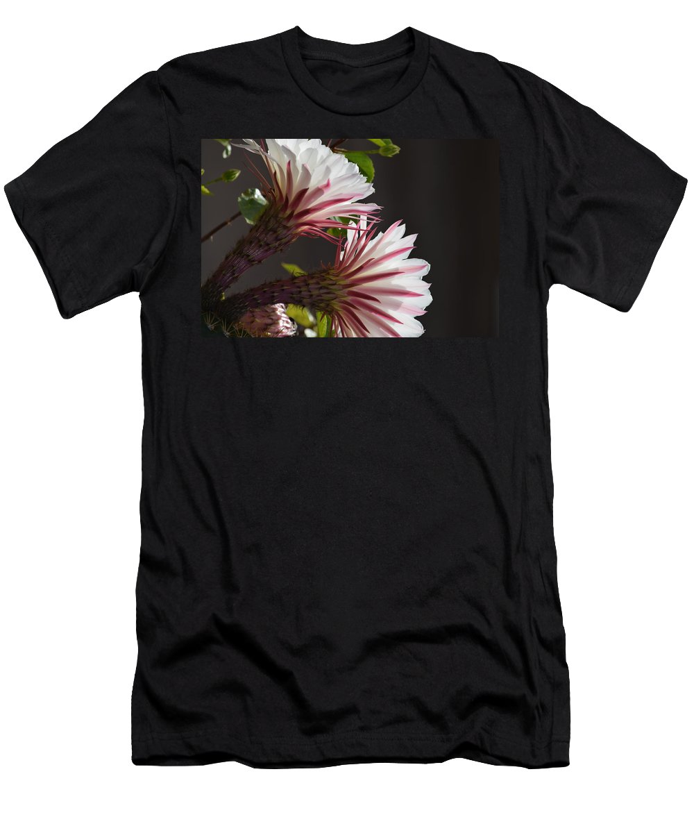 Landscape Men's T-Shirt (Athletic Fit) featuring the photograph Night Bloomers by Diane Barone