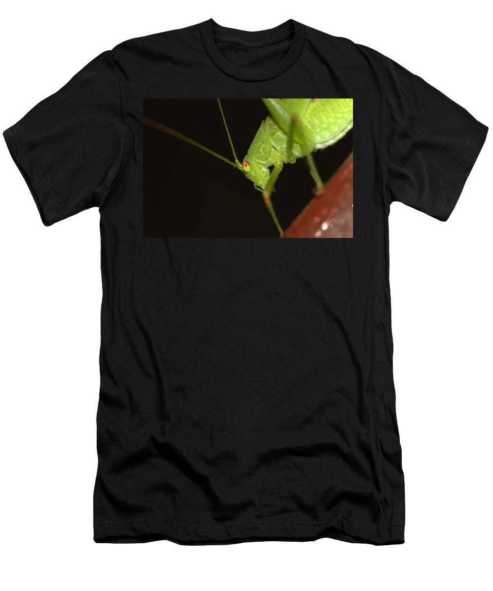 Bug Men's T-Shirt (Athletic Fit) featuring the photograph Nightcrawler by Ricardo Oliveira