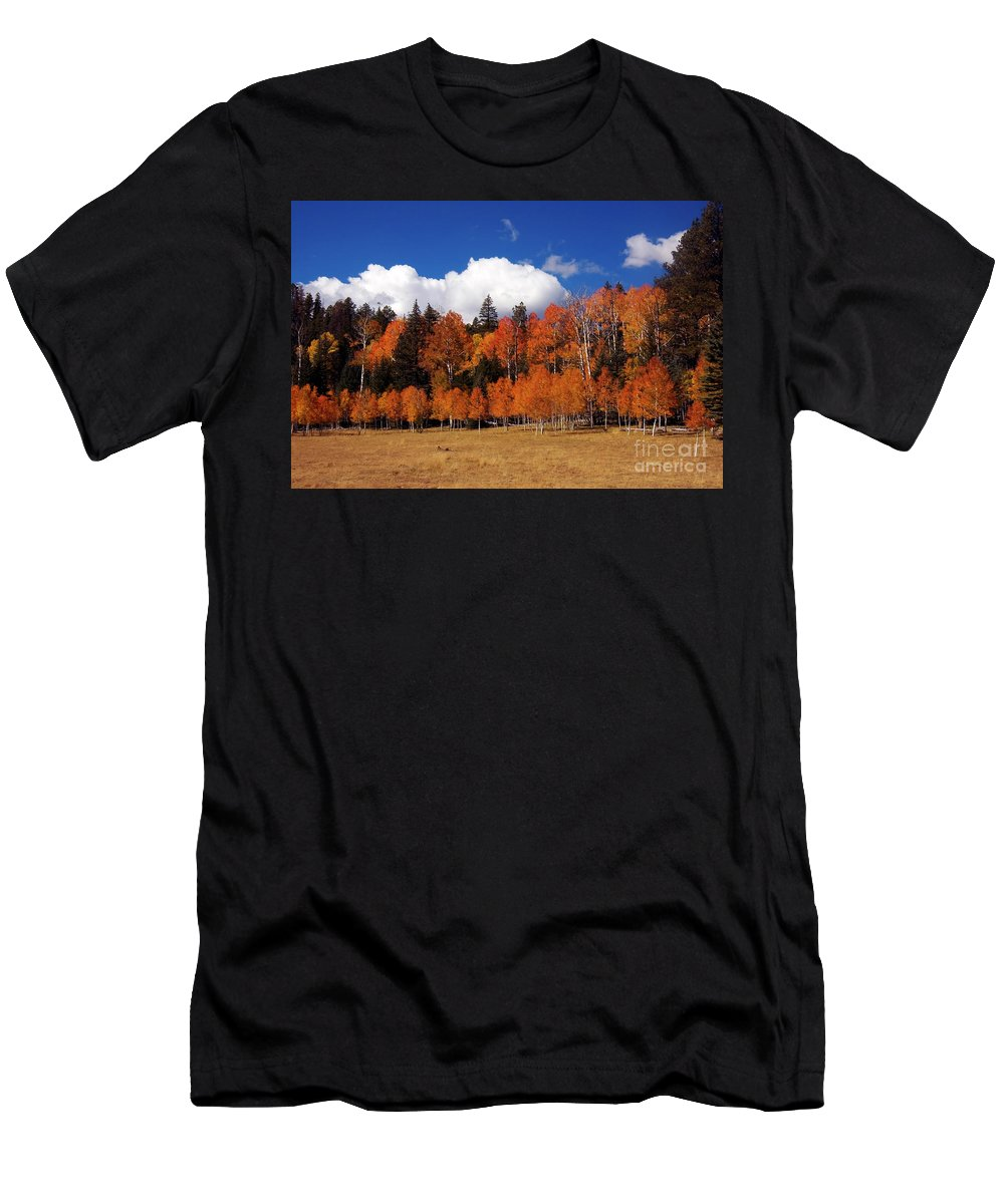 Autumn Men's T-Shirt (Athletic Fit) featuring the photograph North Rim Autumn by Mike Dawson