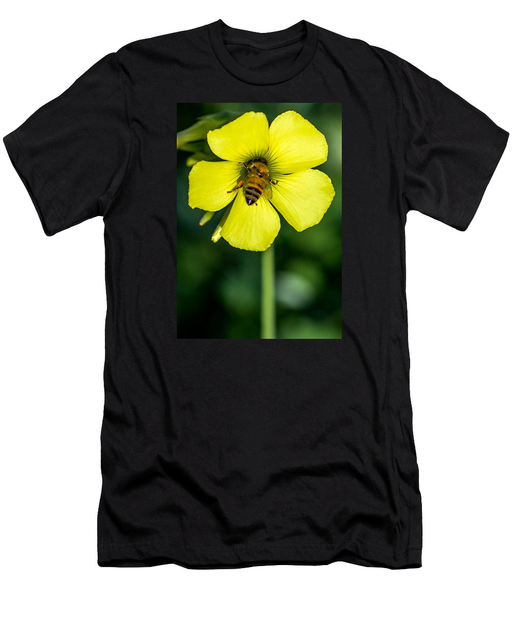Honey Bee Men's T-Shirt (Athletic Fit) featuring the photograph Nose Deep by Shawn Jeffries