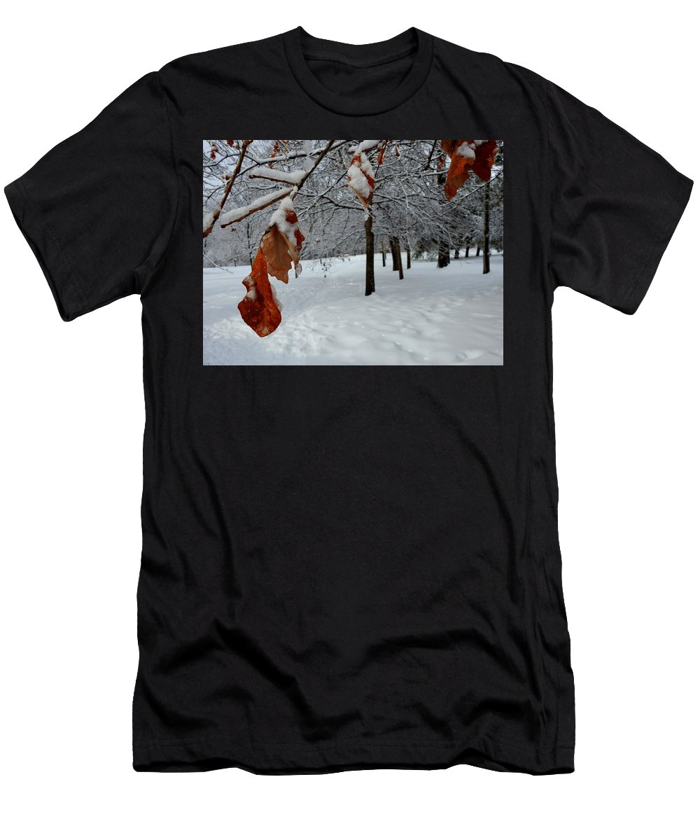 Oak Leaves Men's T-Shirt (Athletic Fit) featuring the photograph Oak Leaves by Betty-Anne McDonald