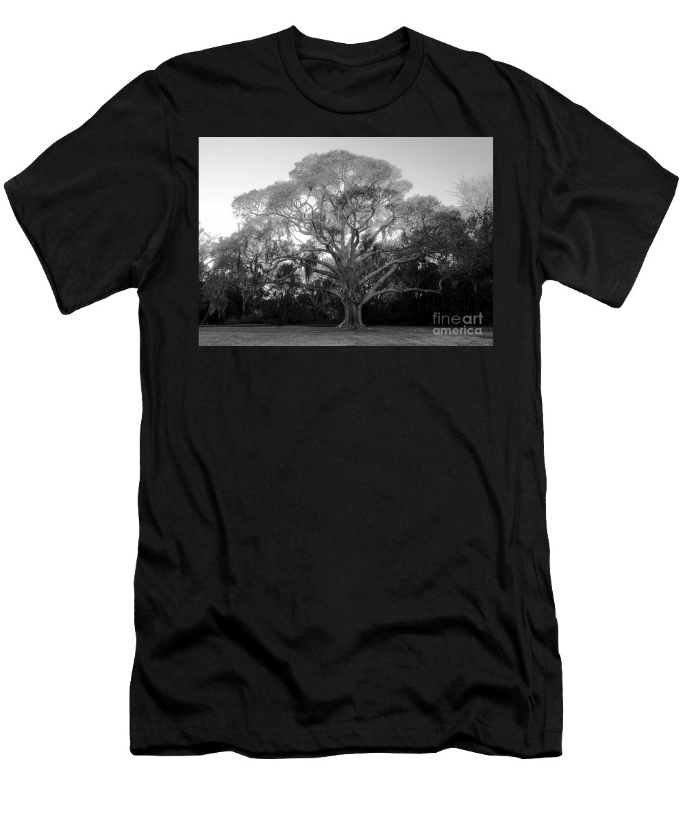 Oak Tree Men's T-Shirt (Athletic Fit) featuring the photograph Oak Tree by David Lee Thompson