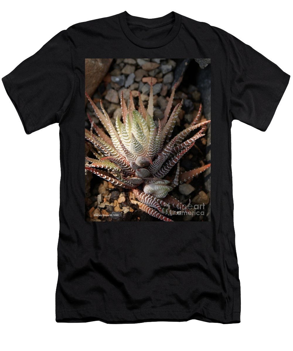 Cacti Men's T-Shirt (Athletic Fit) featuring the photograph Octo Cacti by Shelley Jones