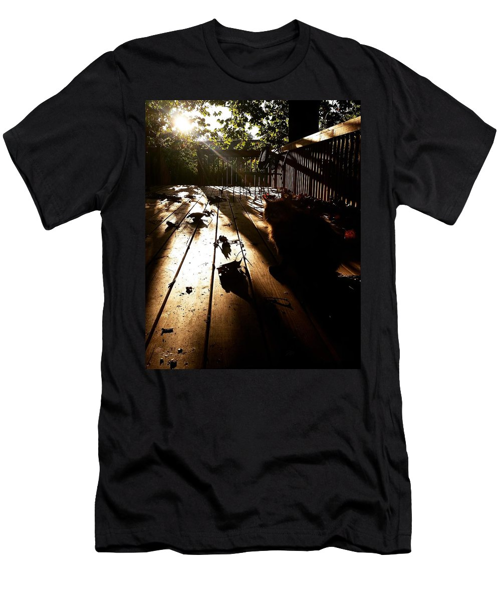 Sunlight Autumn Cat Deck October Men's T-Shirt (Athletic Fit) featuring the photograph October Sunlight by Colby Foster