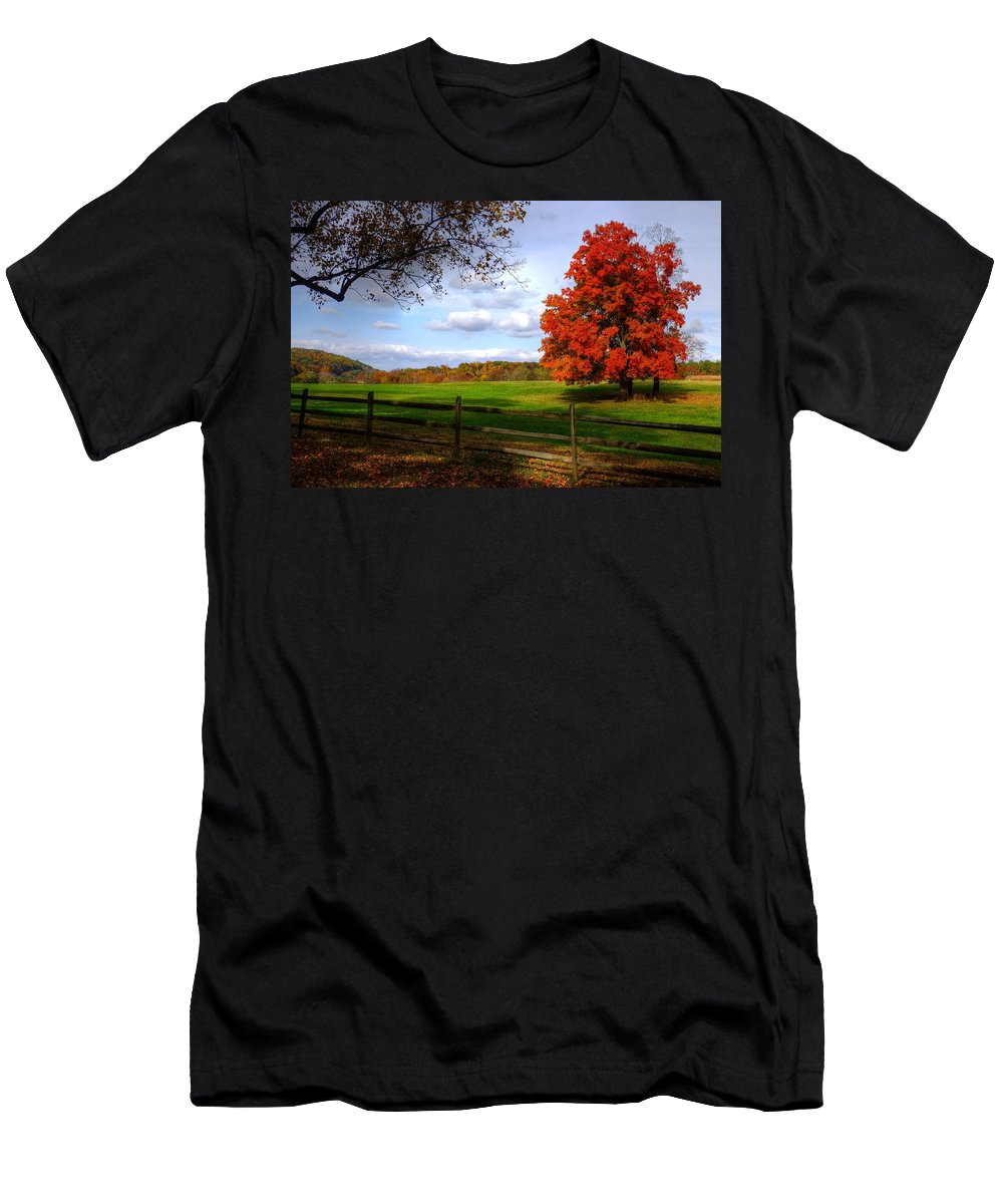 Autumn Men's T-Shirt (Athletic Fit) featuring the photograph Oh Beautiful Tree by Ronda Ryan