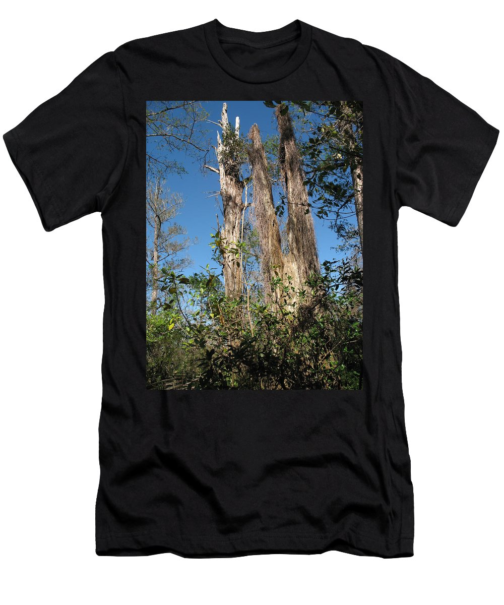 Trees Men's T-Shirt (Athletic Fit) featuring the photograph Old Tress by Christiane Schulze Art And Photography