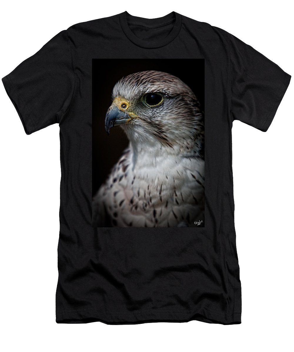 Raptor Men's T-Shirt (Athletic Fit) featuring the photograph Older And Wiser by Chris Lord