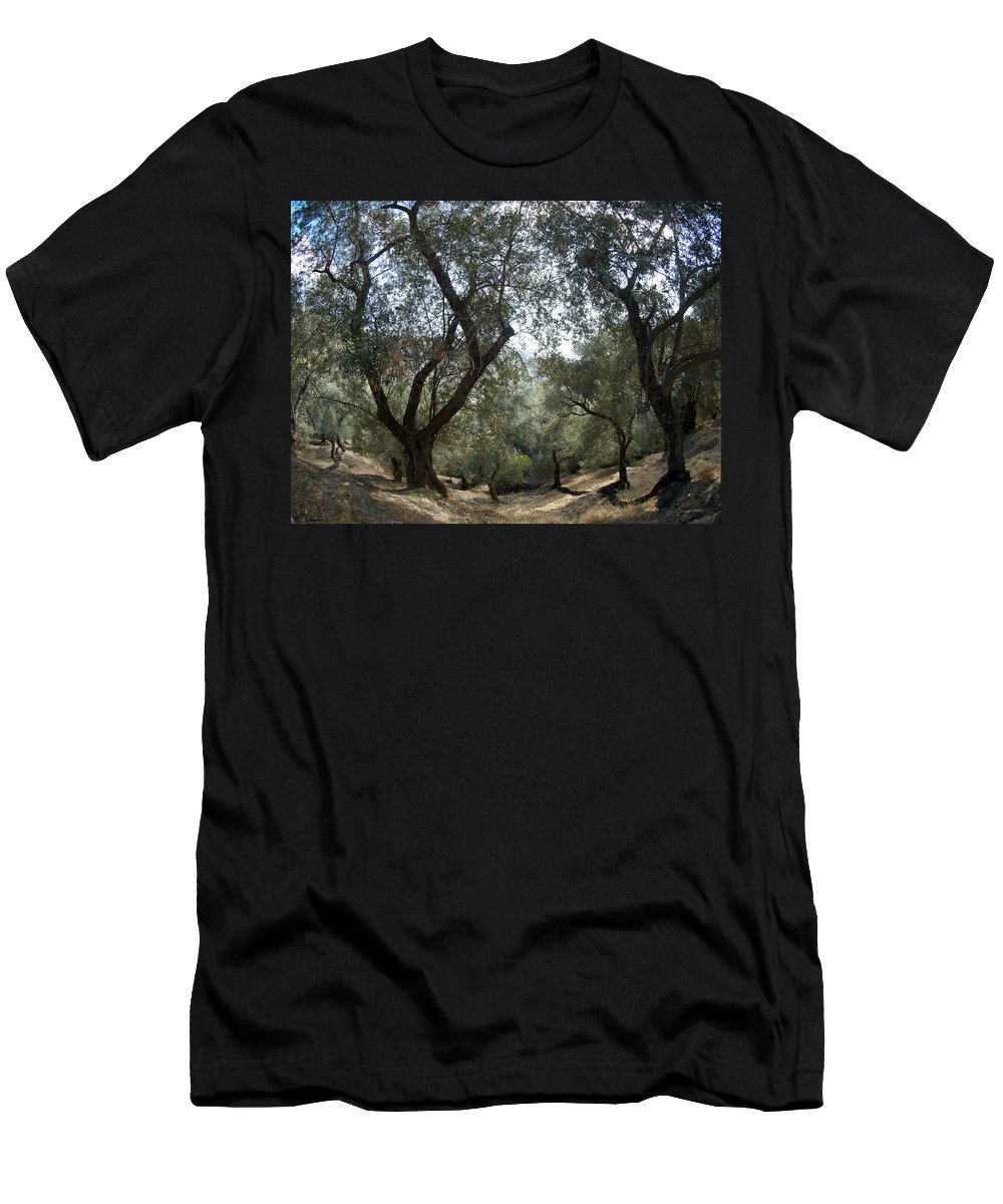 Crete Men's T-Shirt (Athletic Fit) featuring the photograph Olive Trees by Jouko Lehto