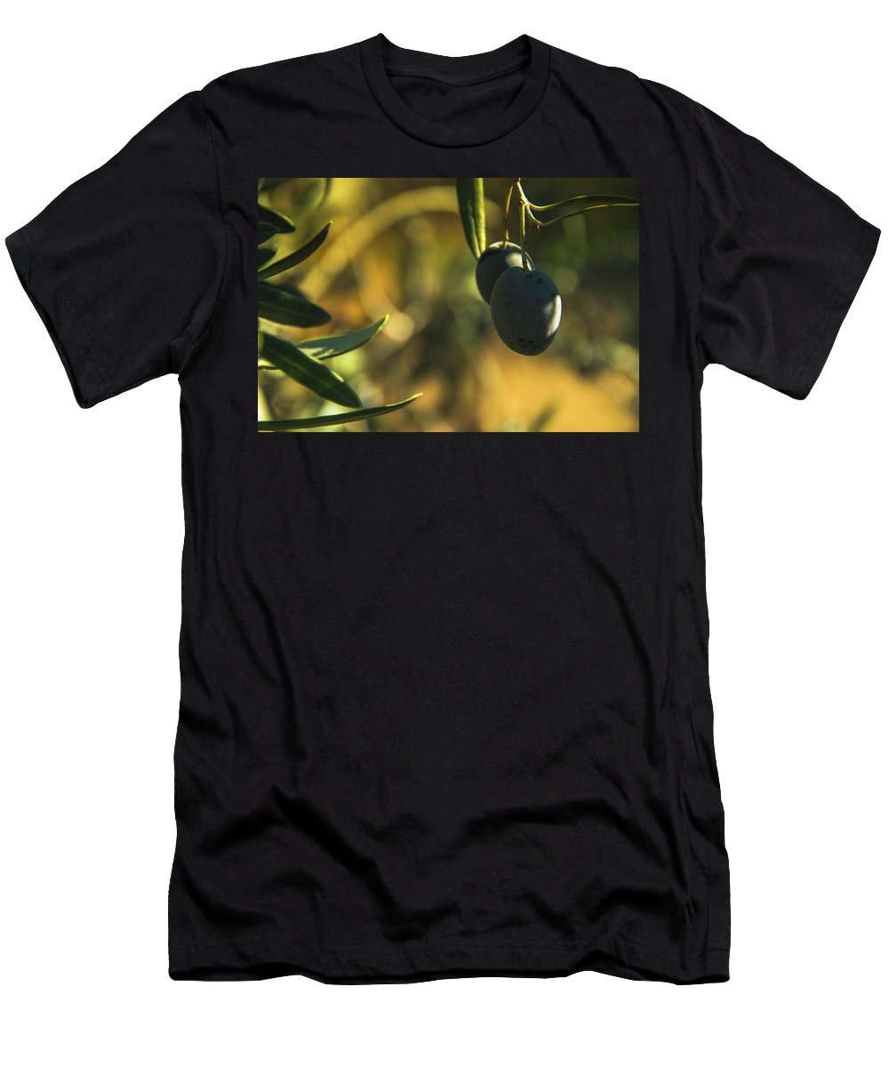 Nature Men's T-Shirt (Athletic Fit) featuring the photograph Olives #2 by Ignacio Leal Orozco