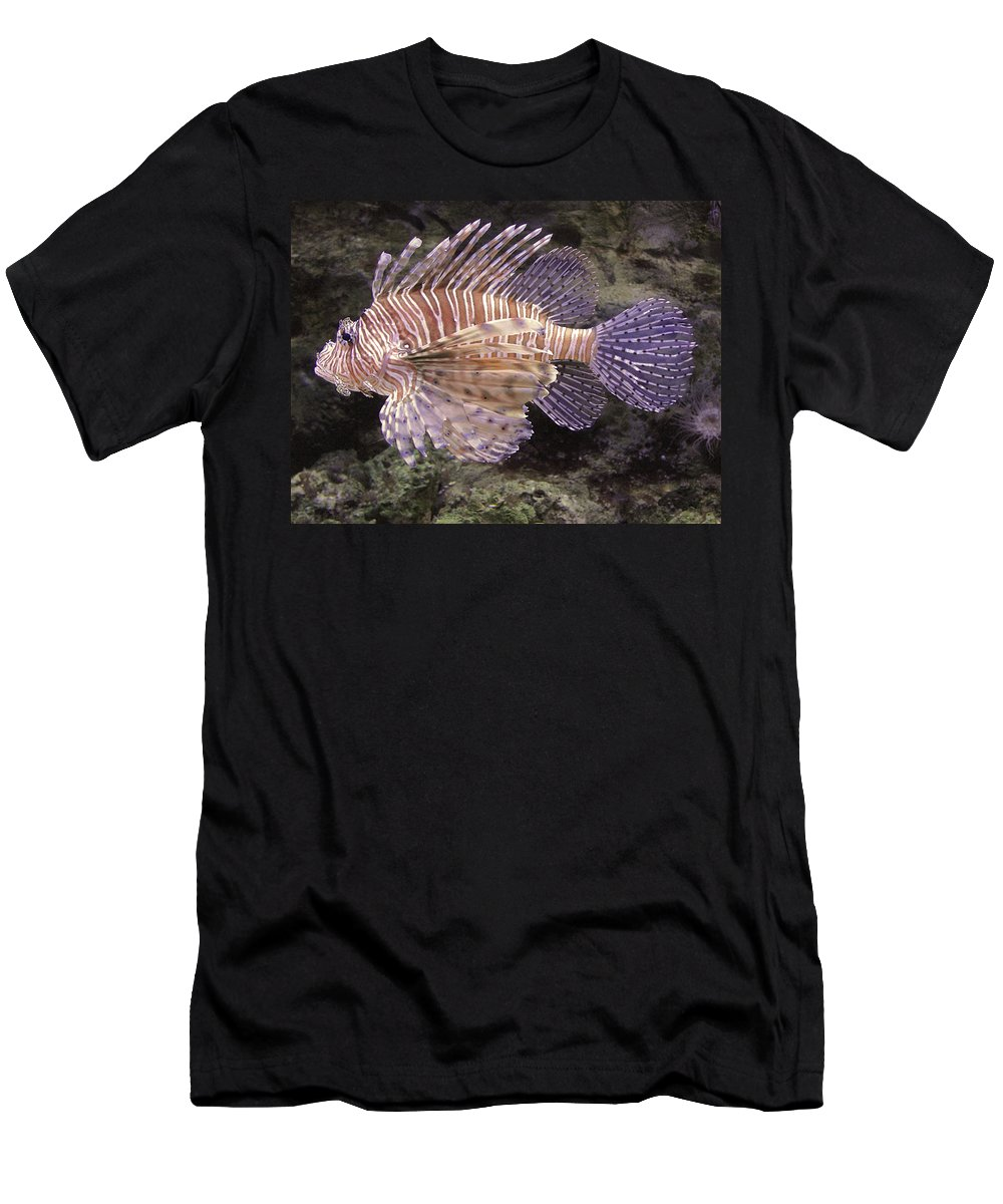 Lionfish Men's T-Shirt (Athletic Fit) featuring the photograph On Patrol by Cathi Abbiss Crane