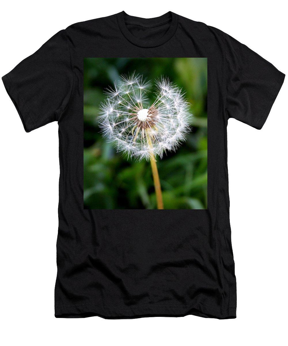 Dandylion Men's T-Shirt (Athletic Fit) featuring the photograph One Dandy Lion by Chris Brannen