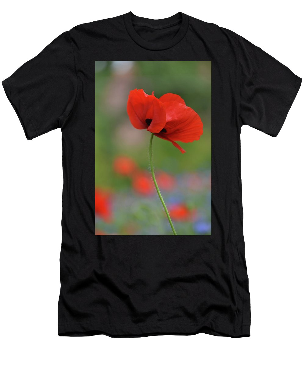 Red Poppy Flower Men's T-Shirt (Athletic Fit) featuring the photograph One Red Poppy by Karen Chatham