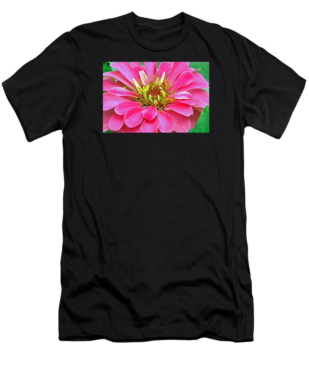 Landscape Men's T-Shirt (Athletic Fit) featuring the photograph Only The Beginning by Mary Halpin
