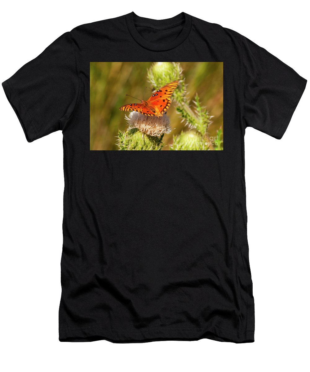 Sanibel Island Men's T-Shirt (Athletic Fit) featuring the photograph Orange Butterfly by Bob Phillips