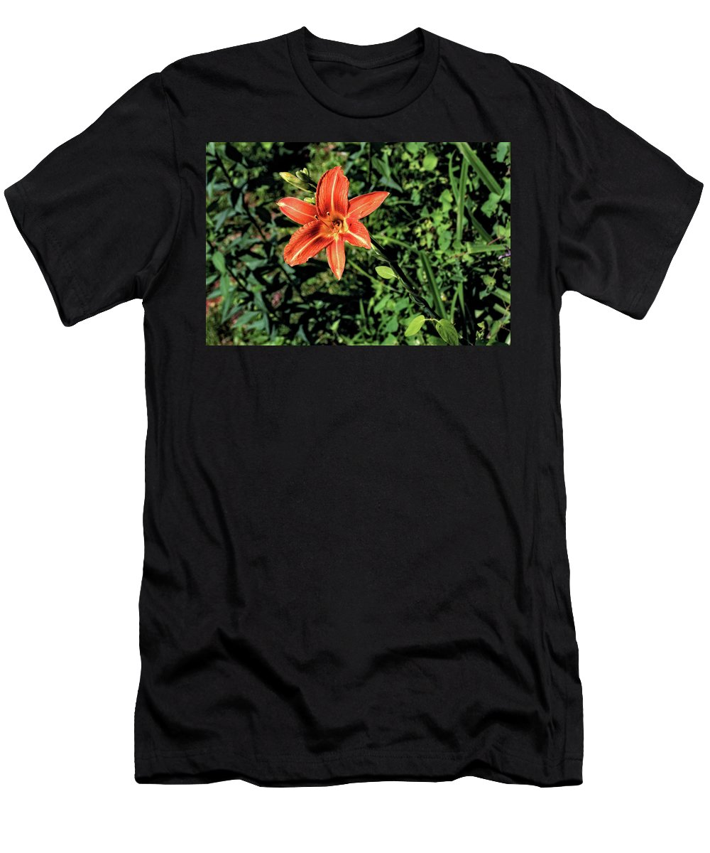 Flower Men's T-Shirt (Athletic Fit) featuring the photograph Orange Day Lily 1 by John Trommer