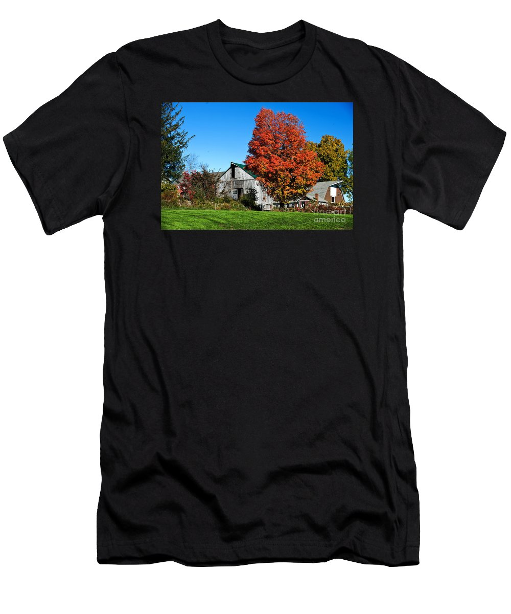 Fall In New England Men's T-Shirt (Athletic Fit) featuring the photograph Orange Tree By The Barn by Jim Calarese
