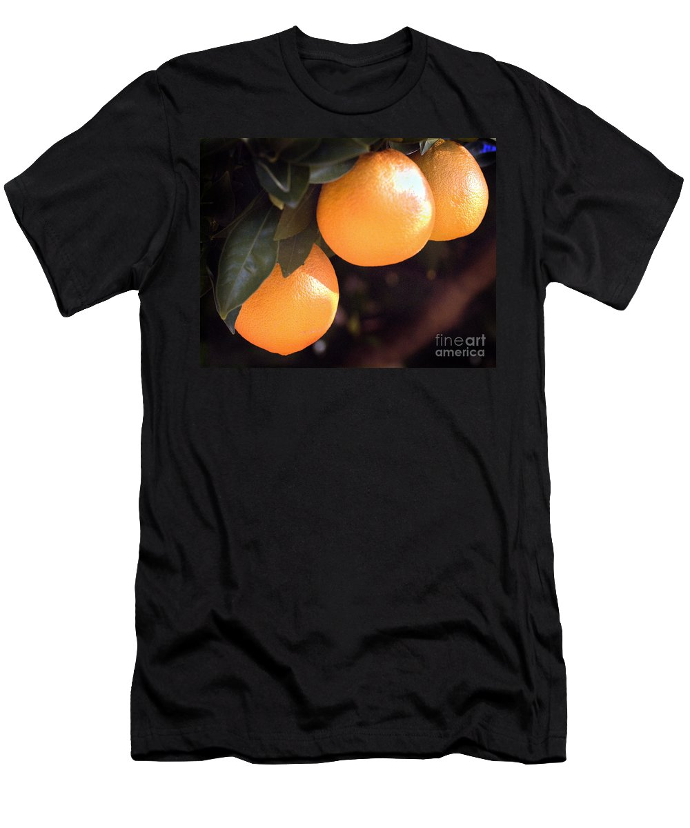 California Scenes Men's T-Shirt (Athletic Fit) featuring the photograph Orange Trio by Norman Andrus